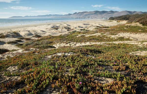 Photograph - Pismo Beach by Tim Newton