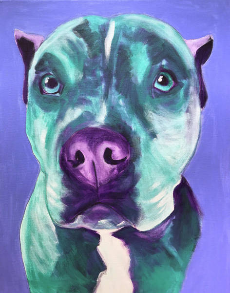 Wall Art - Painting - Pit Bull - Aqua by Alicia VanNoy Call