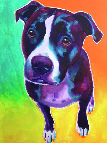 Wall Art - Photograph - Pit Bull - Truman by Alicia VanNoy Call