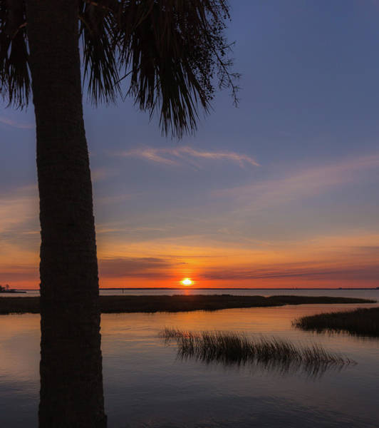 Photograph - Pitt Street Bridge Palmetto Sunset by Donnie Whitaker