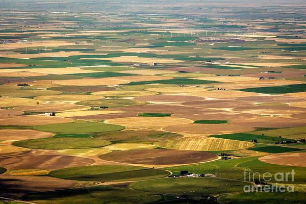 Photograph - Pivots Galore Idaho Landscapes By Kaylyn Franks by Omaste Witkowski
