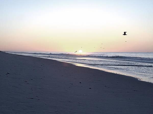 Photograph - Placid Sunrise by  Newwwman