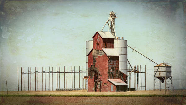 Wall Art - Photograph - Plains Sentinel by Stephen Stookey