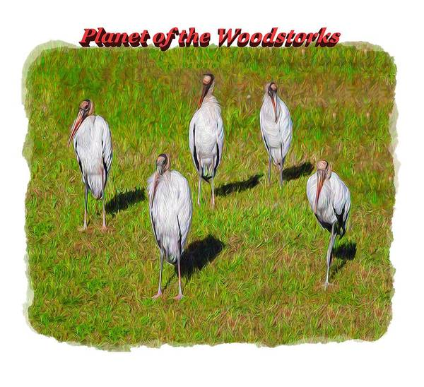 Photograph - Planet Of The Woodstorks 2 by John M Bailey
