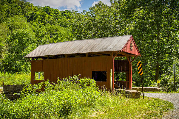 Photograph - Plants Covered Bridge by Jack R Perry