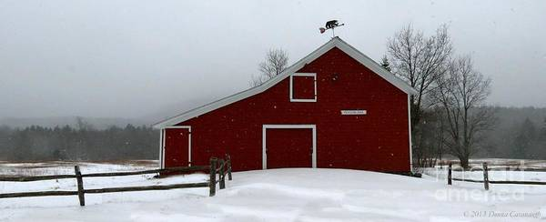 Photograph - Platte Clove Barn by Donna Cavanaugh