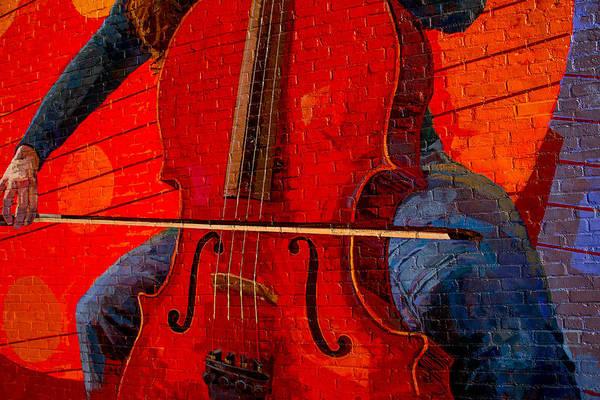 Wall Art - Photograph - Play It by Karol Livote