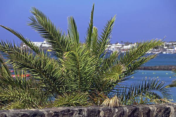 Photograph - Playa Blanca by Tony Murtagh