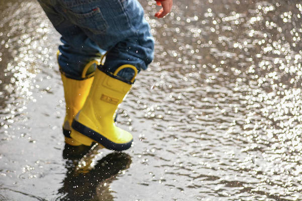 Photograph - Playing In The Puddles by Jesse MacDonald