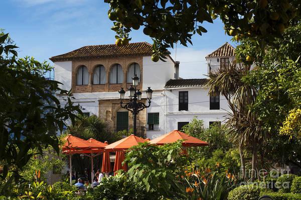 Photograph - Plaza De Naranjas by Brenda Kean