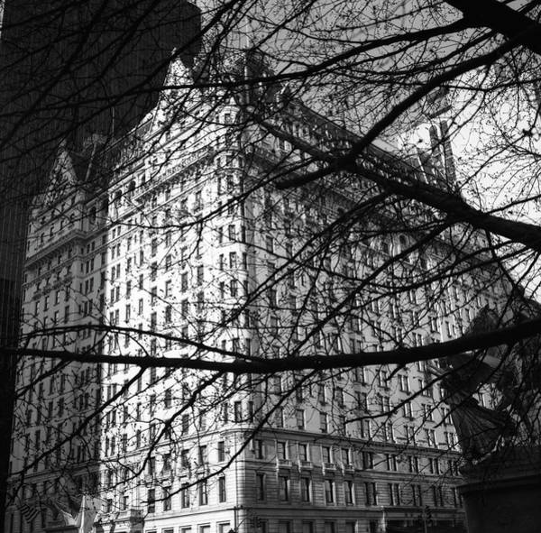 Photograph - Plaza Hotel by Dave Beckerman