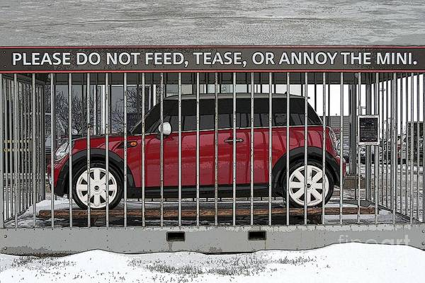 Funny Car Wall Art - Photograph - Please Do Not Feed Tease Or Annoy The Mini by Teresa Zieba