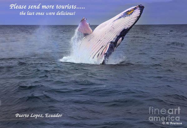 Hoodie Photograph - Please Send More Tourists - Humpback Whale by Al Bourassa