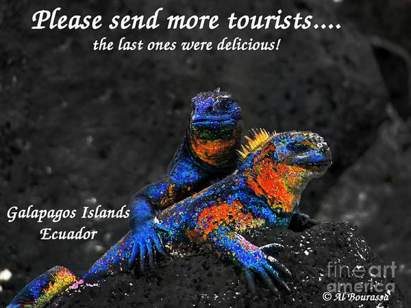 Hoodie Photograph - Please Send More Tourists - Marine Iguana by Al Bourassa