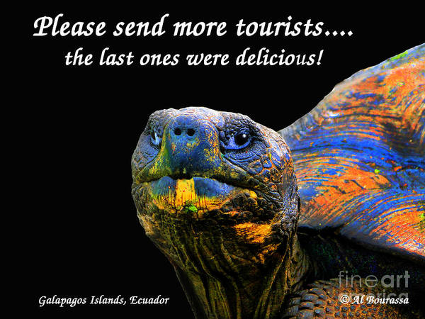Hoodie Photograph - Please Send More Tourists - Tortuga by Al Bourassa