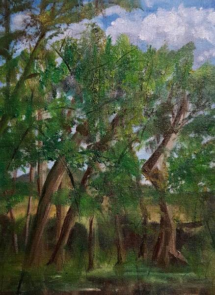 Painting - Plein Air Spring Backyard Sketch    48 by Cheryl Nancy Ann Gordon