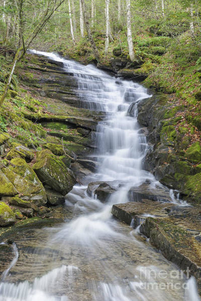 Photograph - Plimpton Falls - Franconia New Hampshire by Erin Paul Donovan