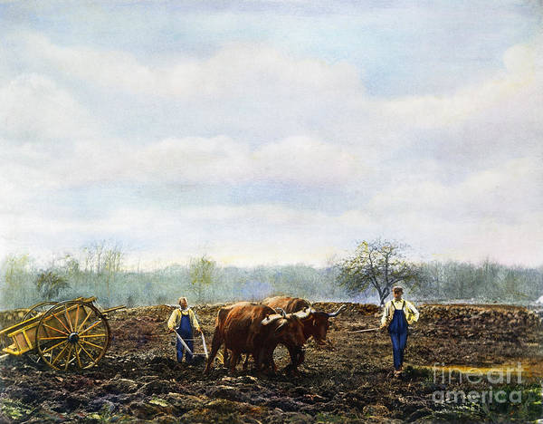 Photograph - Ploughing, 1899 by Granger