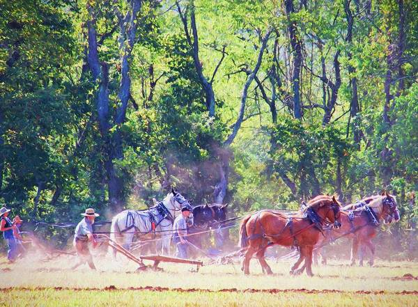 Photograph - Plowing Competition by Alice Gipson