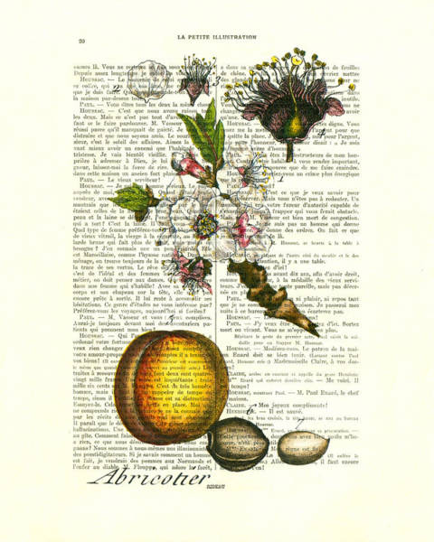 Framed Wall Art - Digital Art - Plum Fruit And Blossom Plant Antique Illustration by Madame Memento