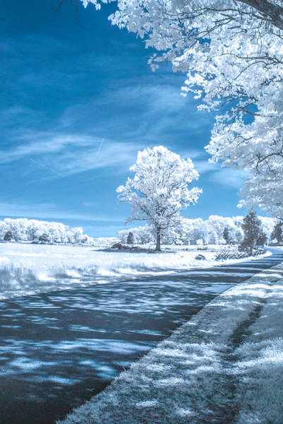 Photograph - Plum Run Ir0050a by Guy Whiteley
