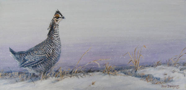 Prairie Grass Painting - Plum Skies On The Prairie by Dreyer Wildlife Print Collections