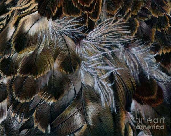 Painting - Plumas De Oro by Rosellen Westerhoff