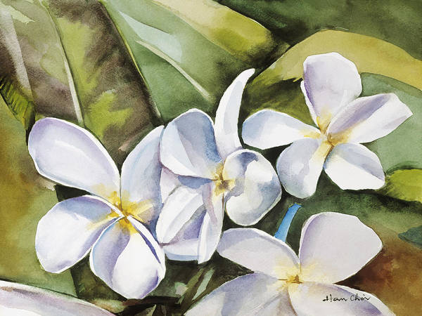 Wall Art - Painting - Plumeria II by Han Choi - Printscapes