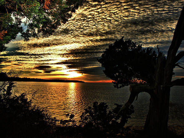 Photograph - Pocasset Sunset by Bruce Gannon