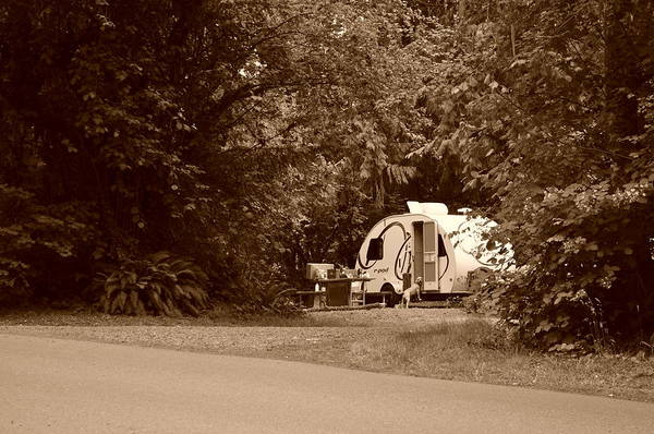 Photograph - Pod Camper by Tikvah's Hope