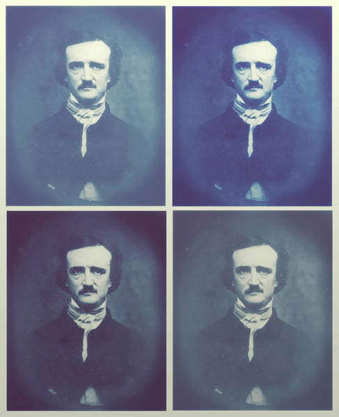 Wall Art - Photograph - Poe - Horrible Sanity by Little Bunny Sunshine