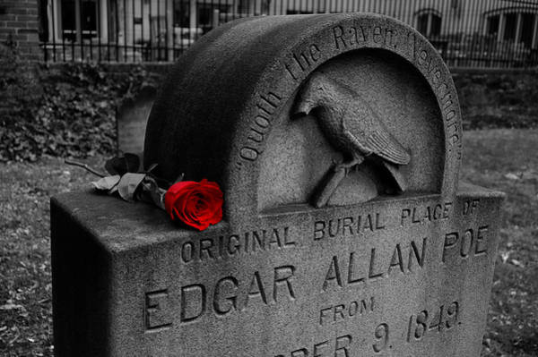 Tombstone Photograph - Poe's Red Rose by Wayne Higgs