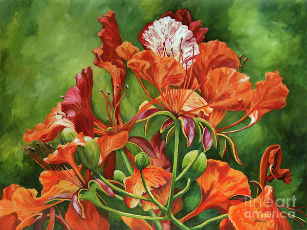 Wall Art - Painting - Poinciana In Detail by John Clark
