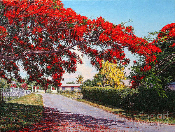 Painting - Poinciana Shadows by Eddie Minnis
