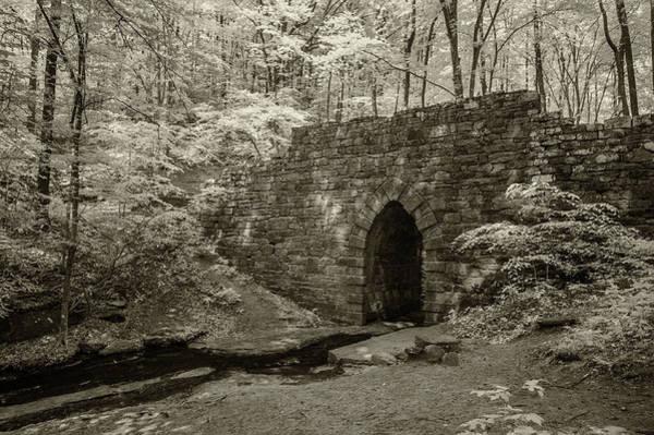 Photograph - Poinsett Bridge-ir-6 by Joye Ardyn Durham
