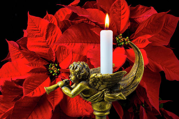 Foilage Photograph - Poinsettia And Gold Angel by Garry Gay