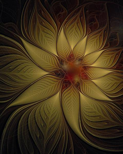 Poinsettia In Gold Art Print