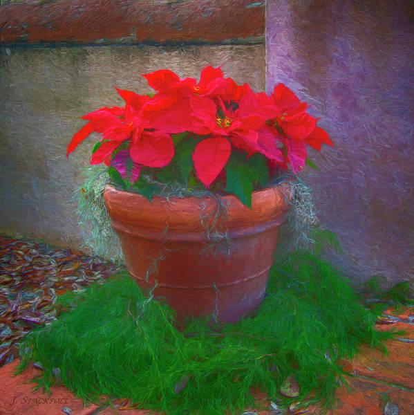 Carol Singing Photograph - Poinsettia Pot by Jennifer Stackpole