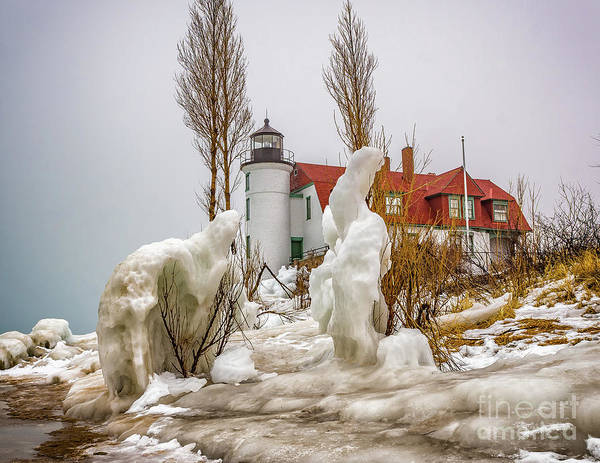 Photograph - Point Betsie Framed In Ice by Nick Zelinsky