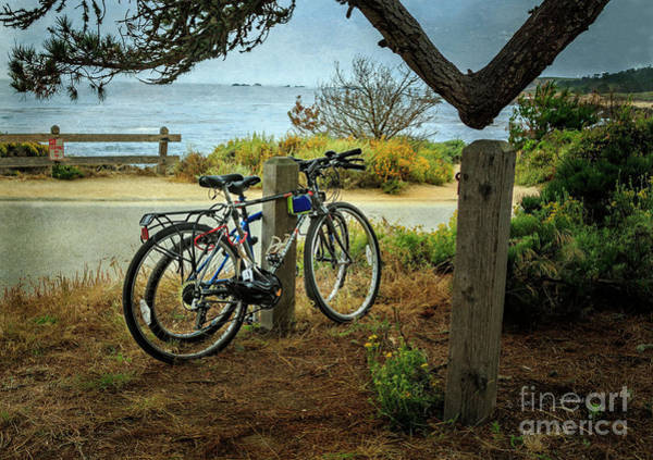 Photograph - Point Lobos Bicycles by Craig J Satterlee
