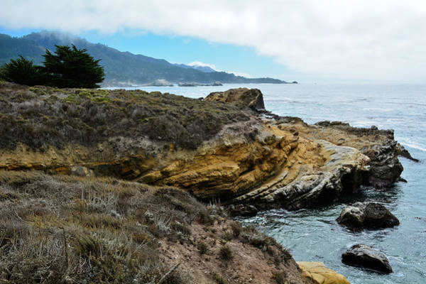 Photograph - Point Lobos State Natural Reserve by Kyle Hanson