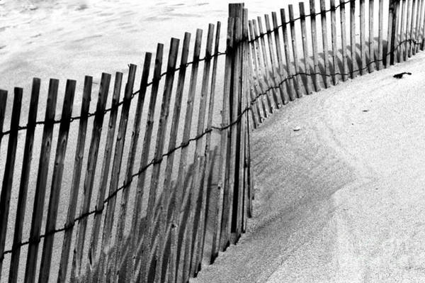 Point Pleasant Photograph - Point Pleasant Dune Fence by John Rizzuto