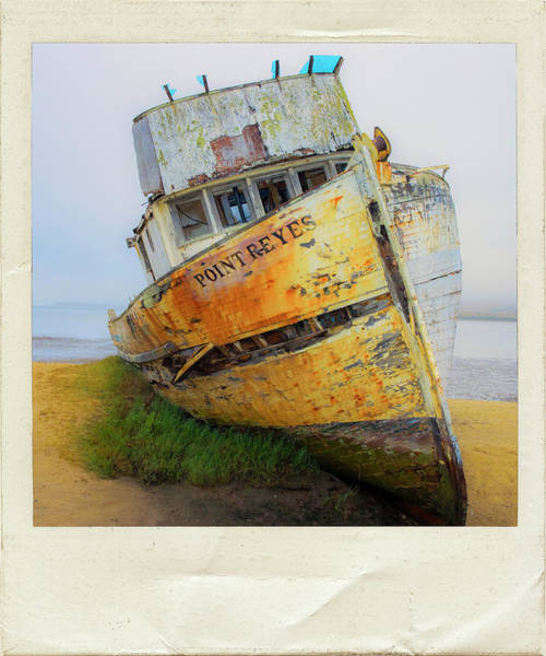 Wall Art - Photograph - Point Reyes by Dominic Piperata