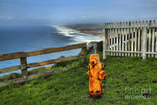 Photograph - Point Reyes Fire Hydrant by Adam Jewell