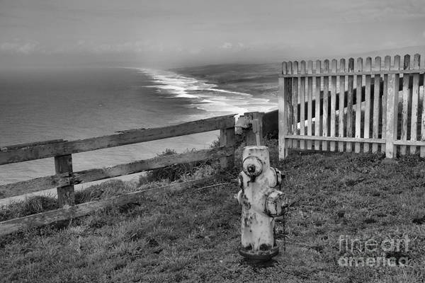 Photograph - Point Reyes Fire Hydrant Black And White by Adam Jewell
