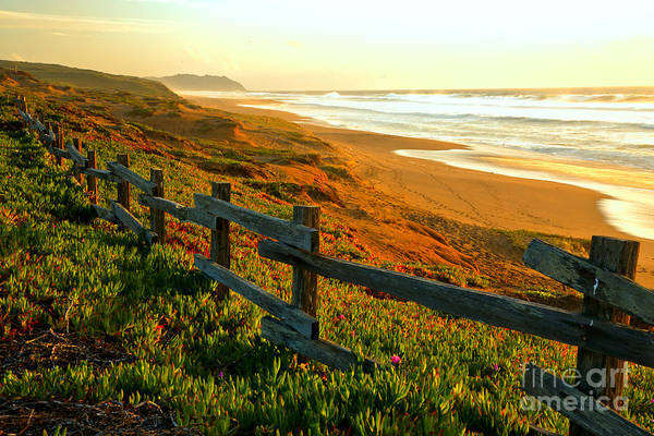 Photograph - Point Reyes Golden Sunset by Adam Jewell