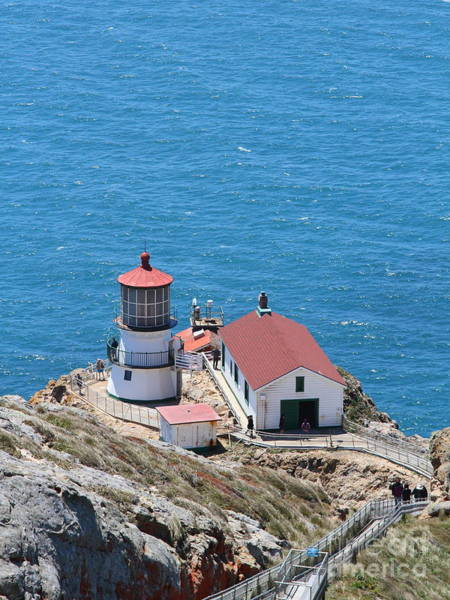 Wingsdomain Photograph - Point Reyes Lighthouse In California 7d15975 by Wingsdomain Art and Photography