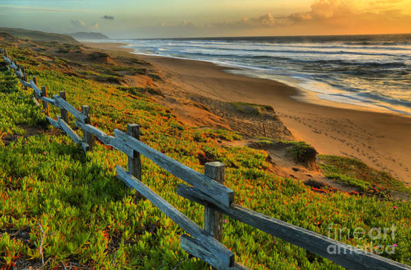 Photograph - Point Reyes Paradise by Adam Jewell