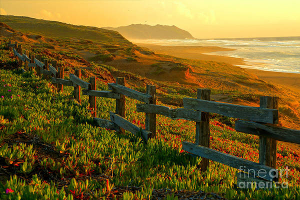 Photograph - Point Reyes Sunset by Adam Jewell