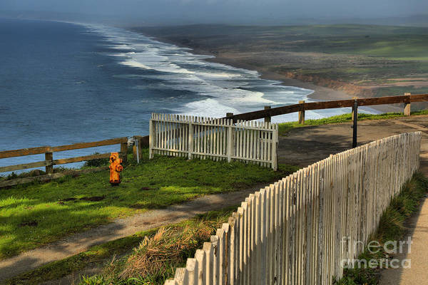 Photograph - Point Reyes Wooden Fences by Adam Jewell